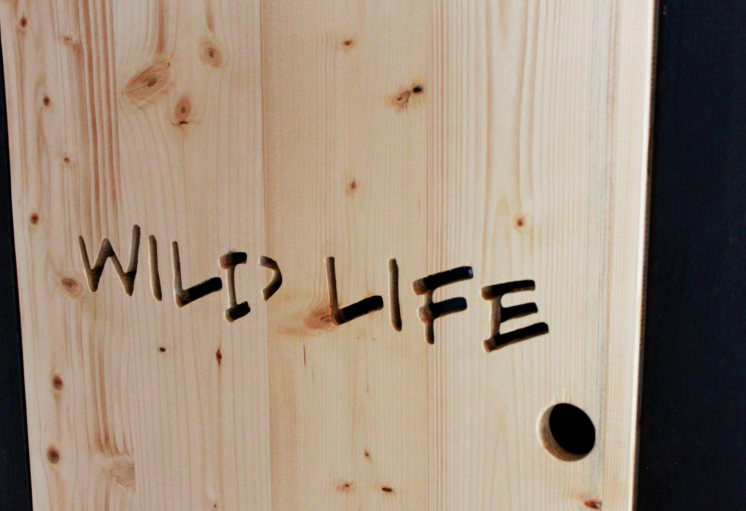Schriftzug Wild Life im Tiny House Bigge